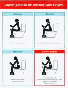 toilet position